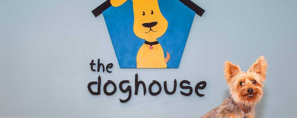 In the Doghouse, Charleston, SC